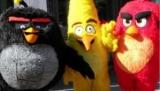 Злые птицы производитель глазам оценки в $1 млрд.